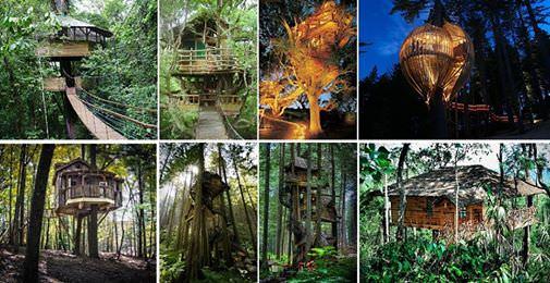 Baumhäuser Beispiele