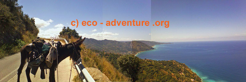 Hercule enjoys the lovely panorama view in the sicilian mountains.