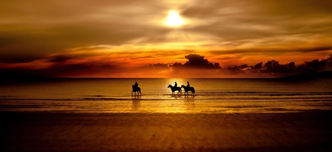 Three cowboys horseback riding long the beach in to the sunset.