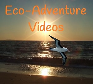 Eco-Adventure.Org Video Channel